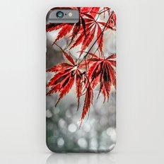 Japanese Red Maple Leaves Slim Case iPhone 6s