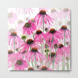 pink coneflower field Metal Print
