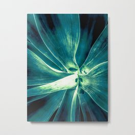 green succulent leaves texture abstract Metal Print