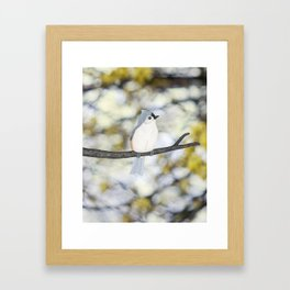 tufted titmouse - bokeh Framed Art Print