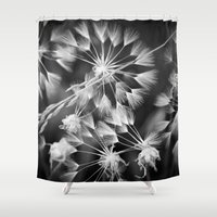coconut wishes Shower Curtains featuring Wishes  by A Wandering Soul