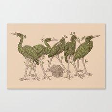 Bird Forest Canvas Print