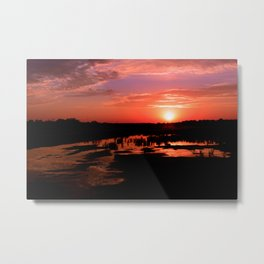 Mud Puddle Metal Print