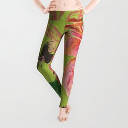 Flowers Butterflies Leggings