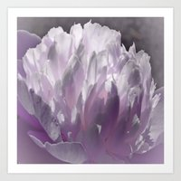 romance Art Prints featuring Romance by Lena Photo Art
