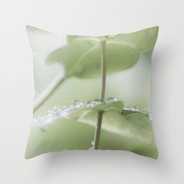 the art of peace Throw Pillow