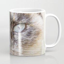 Portrait of a Siamese cat Coffee Mug