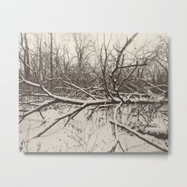 tangled woods Metal Print