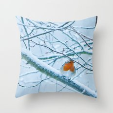 Robin in the cold Throw Pillow