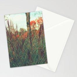Presence Stationery Cards