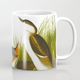 Eared Grebe John James Audubon Scientific Illustration Birds Of America Drawings Coffee Mug