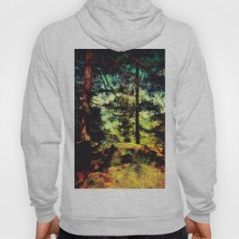 Magic Place, Stoney Hill, Vancouver Island Hoody