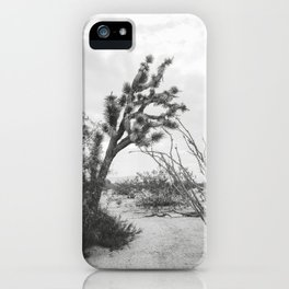 Joshua Tree Sep171 iPhone Case