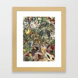 BOMBUS TERRESTRIS Framed Art Print