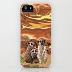 Three Meerly Meerkats  Slim Case iPhone (5, 5s)