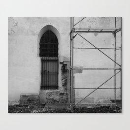 light consolidation Canvas Print