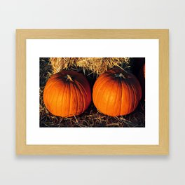 Twin Vintage Pumpkins Framed Art Print