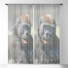 Happy Gorilla Lope Sheer Curtain