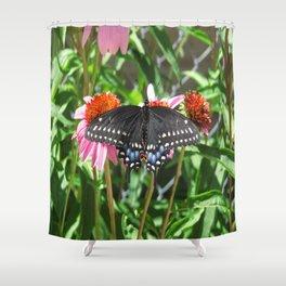 Black Beauty Shower Curtain