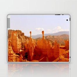 Hoo Doos Laptop & iPad Skin