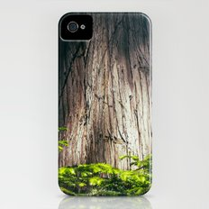 Cedar Slim Case iPhone (4, 4s)
