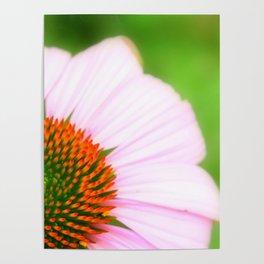 Pink Flower | Nadia Bonello Poster