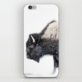 Bison in Yellowstone National Park iPhone Skin