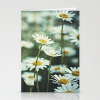 daisies Stationery Cards featuring daisies by Bonnie Jakobsen-Martin