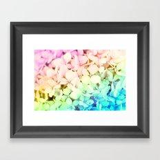 Pastel Rainbow Flowers Framed Art Print