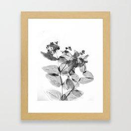Ghostly Blooms Framed Art Print