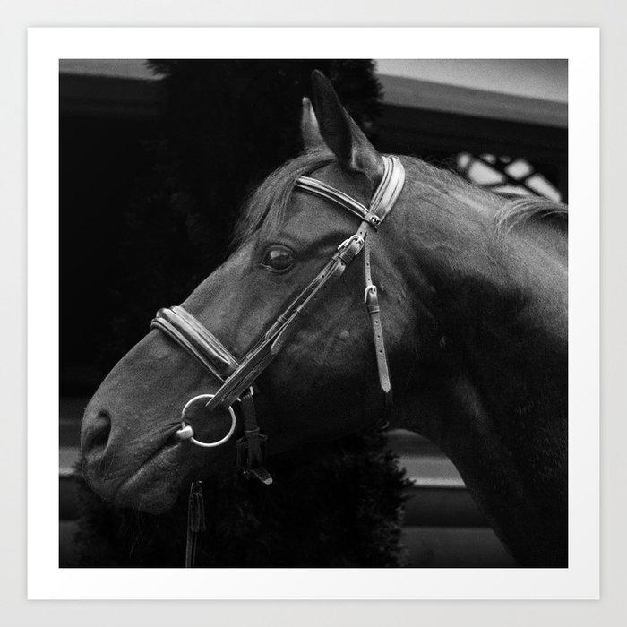 Horse-Head Art Print