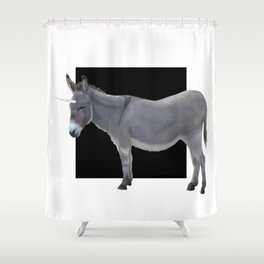 Be Who You Want to Be Shower Curtain