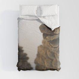 Italian Stone Pine Pinecones Comforters