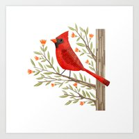 cardinal Art Prints featuring Cardinal by Stephanie Fizer Coleman