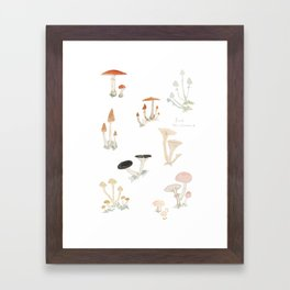Sketchbook Mushrooms Framed Art Print