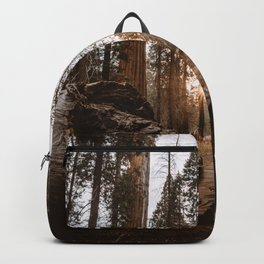 Light Between Fallen Sequoias Backpack