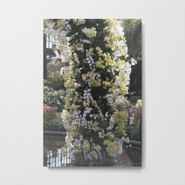 Longwood Gardens Orchid Extravaganza 18 Metal Print