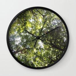 Looking up at the Trees Wall Clock