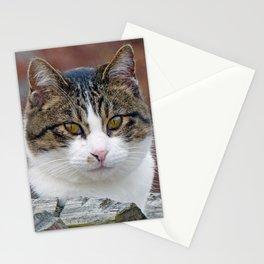 Pretty Girl Stationery Cards