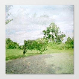 ghost tree Canvas Print