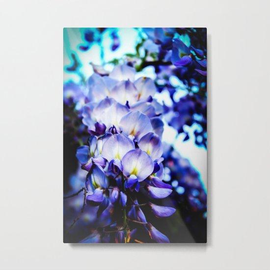 Flowers magic 2 Metal Print