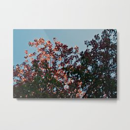 Almost Fell Seven Metal Print