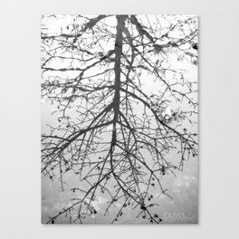 { Reflection } Canvas Print