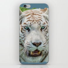 THE BEAUTY OF WHITE TIGERS iPhone & iPod Skin