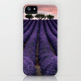 Lavender Fields iPhone Case