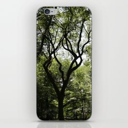 Central Park- Dancer iPhone Skin