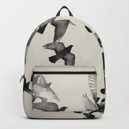 Buongiorno III.  Backpack