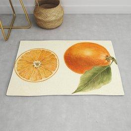Vintage Painting of an Orange Rug