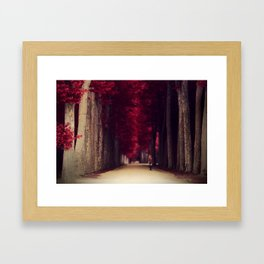 Red colors of autumn, surreal photo, red trees, alley in a park Framed Art Print