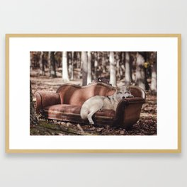 Nap in the Woods Framed Art Print